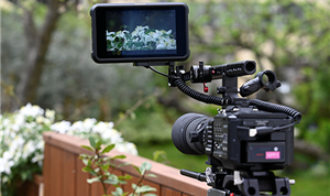 Atomos competition encourages creative wildlife cinematography