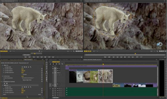NAB 2014: Adobe updates Creative Cloud apps