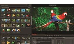 Blackmagic helps with broadcast monitoring in FCP X 10.0.3