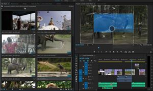 Adobe unveils advancements in video products line