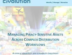 White Paper: Managing piracy-sensitive assets