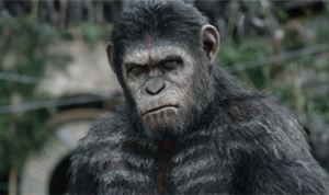 Director's Chair: Matt Reeves - 'Dawn of the Planet of the Apes'